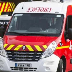 INFLUENZA: Summit a Parigi dei ministri della salute è emergenza in tutta l'Europa